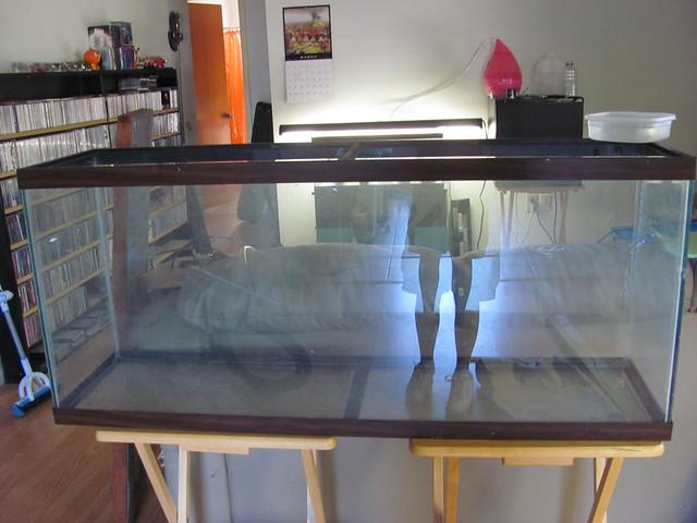 My new 55 gallon terrarium