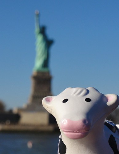 Sightseeing at the Statue of Liberty