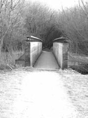 #seemyalmere #Bridge at park