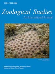 東海岸發現的新種石珊瑚,引躍上國際學術期刊