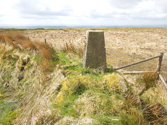 12 04 21 TP5964 Shoulsbarrow Common Trig