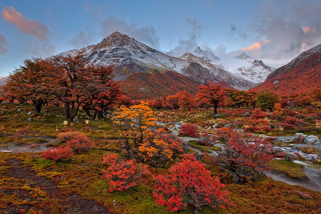 Autumn in Argentina