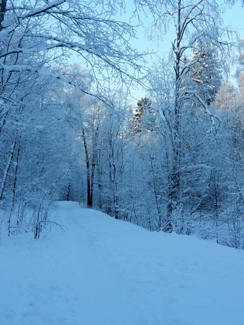 Winter_6_2012