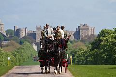 Royal Windsor Horse Show 2012