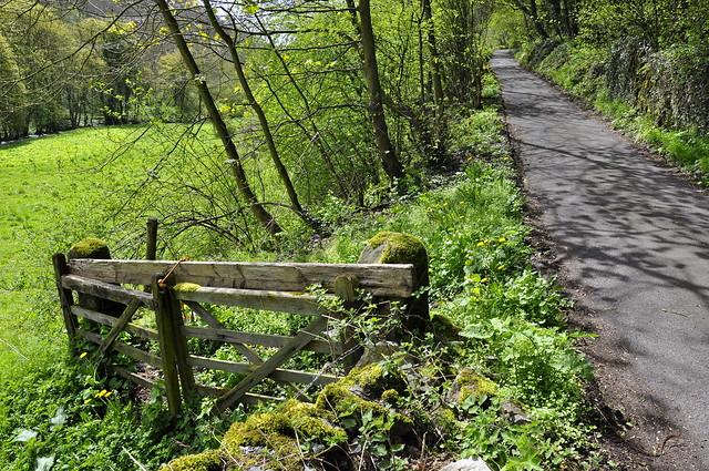 Spring country lane