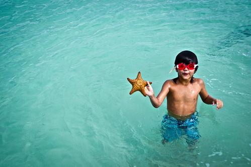 Snorkeling in Roatan - Underwater Museum