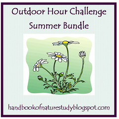 Summer bundle button - Square
