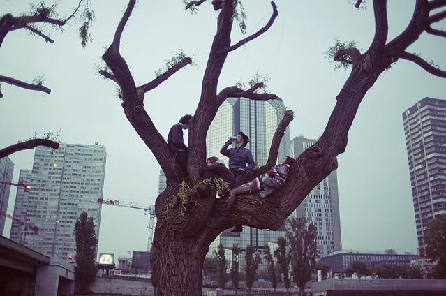 Th o Gosselin - FAMILY TREE
