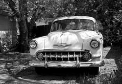 1953 Chevy 150