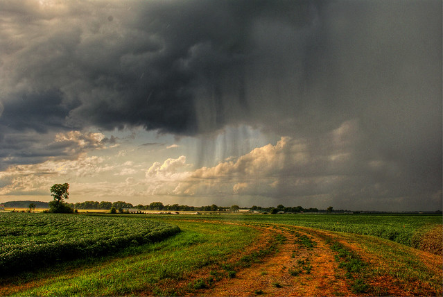 The Storm (HDR)