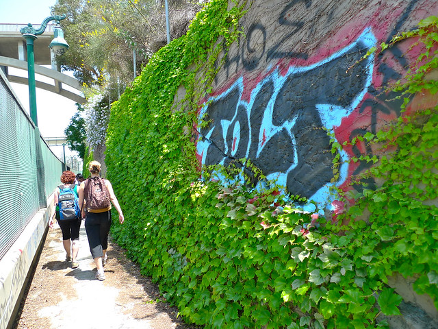 Pruning for graffiti