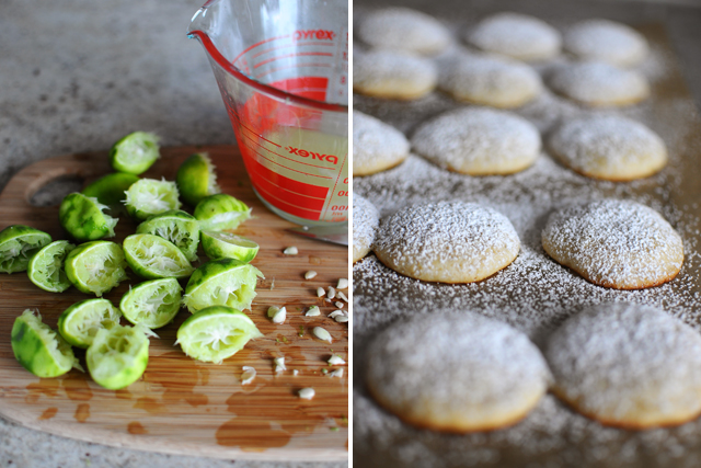 key-lime-cookie-making