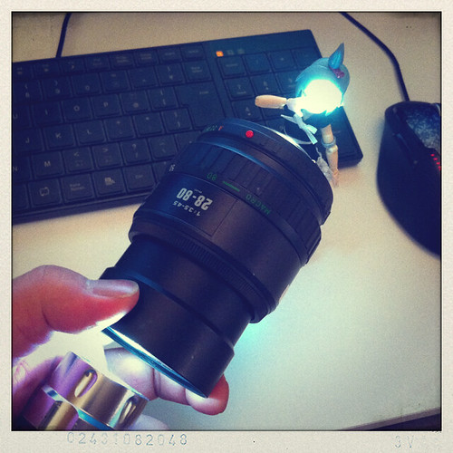 カメラロール-2868