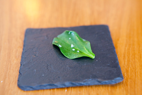 Part of Course 2: Oyster leaf with sea salt
