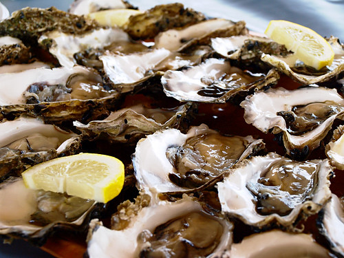 Oysters from Delta de l'Ebre, Catalonia
