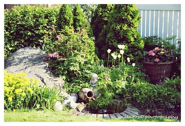 puutarha 173T