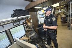 MTAPD Canine Training Facility