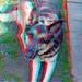 4505125320_332d26be10_b_tonemapped