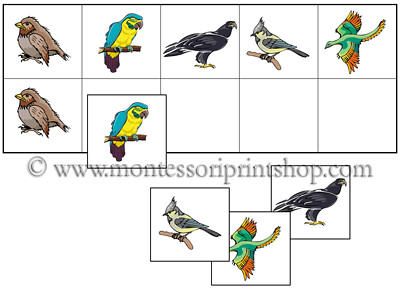 Bird Match-Up and Memory Game (Image from Montessori Print Shop)