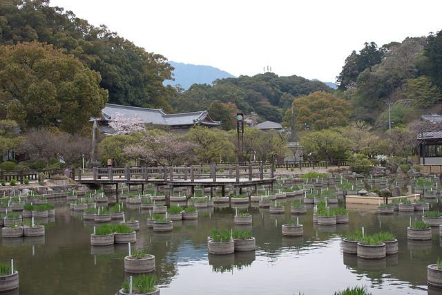 2012-kyushu-681