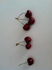 art(0.0), jewelry making(0.0), flower(0.0), heart(0.0), red(0.0), jewellery(0.0), earrings(0.0), pink(0.0), petal(0.0), bead(0.0), organ(0.0), cherry(1.0), produce(1.0), food(1.0),