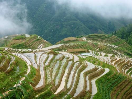 guangxi 14 pingan et les terrasses du peuple zhuang d couvrir l 39 asie d couvrir d. Black Bedroom Furniture Sets. Home Design Ideas