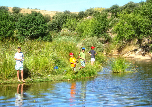 Competición de Pesca 03