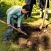 Baumpflanzung RSO 100