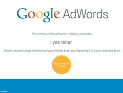 Google AdWords Qualified - Reporting and Analysis