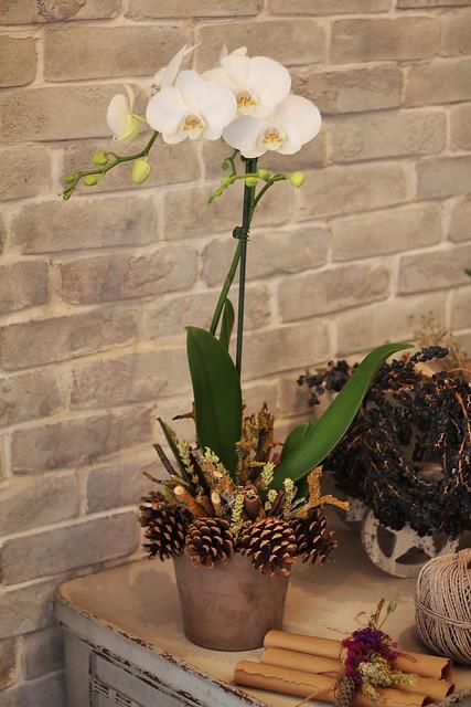 sunumonemlidir, vesaire, butik çiçek atölyesi