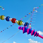 A summer of kites