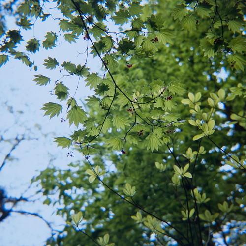 20120517004takakura.jpg