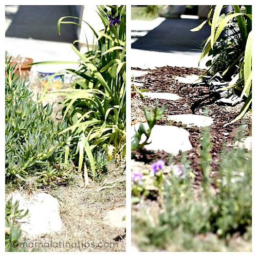 Path Collage Garden