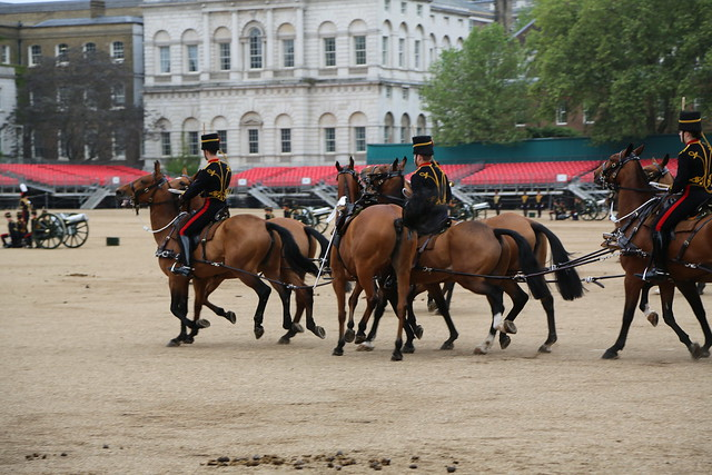 King's Troop