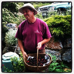 Alex delivers cherries from the Fosse valley #thathill