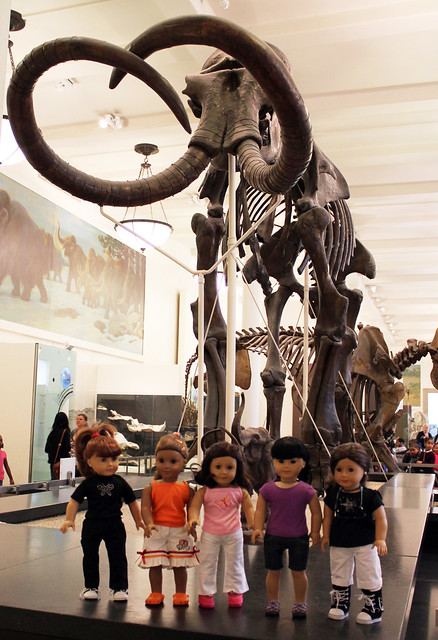 Bolton Girls at AMNH