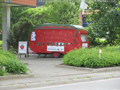 Hornbrooker Erdbeere