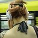 Woman with Headphones by kohlmann.sascha