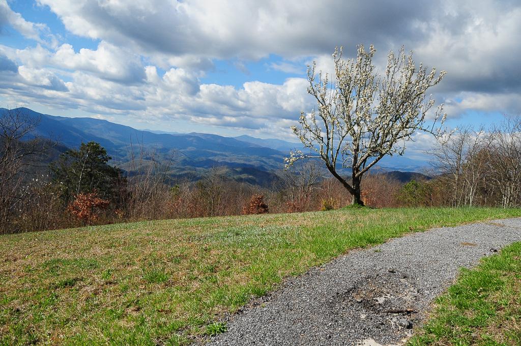 Elevation of Culbertson Rd, Greeneville, TN, USA ... on
