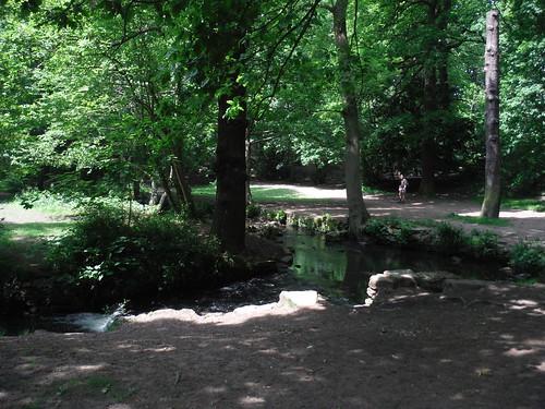 Porter Brook in Endcliffe Park