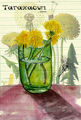 aqua189 by Stéphane Feray