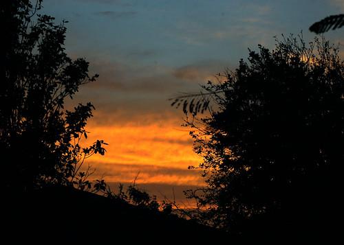 sunset sky bonaire ©allrightsreserved