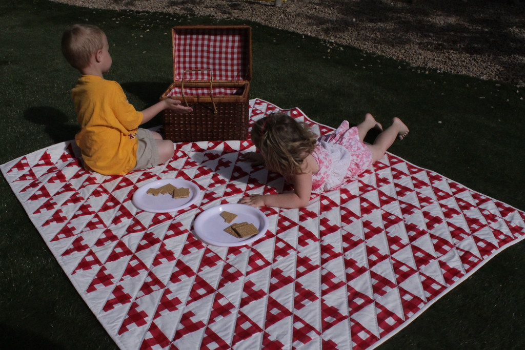 Enjoying the new picnic quilt