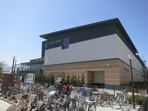 京都水族館、かなり混んでた