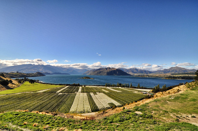 Rippon Valley Winery