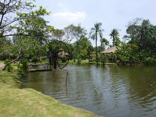 V 12-Ho Chi Minh-Parc-Maries (17)