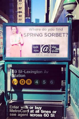 spring sorbet