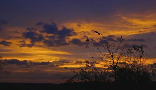 county west virginia kentucky clark dulcimer picsapril2012