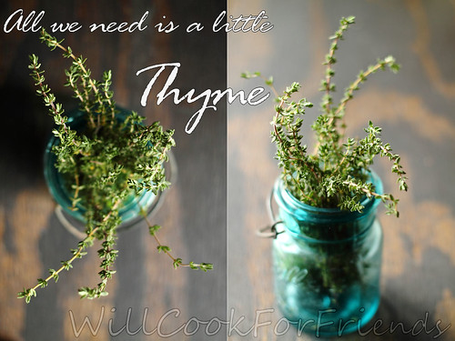 thyme together text b