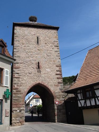 dambach la ville- chateaux- bernstein- ortenbourg 008